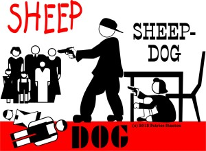 Sheep and Sheepdog