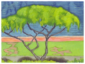 "Tree along Ala Wai Canal, from Ala Moana Hotel balcony; 6""x8"" opaque watercolor on artist canvas."