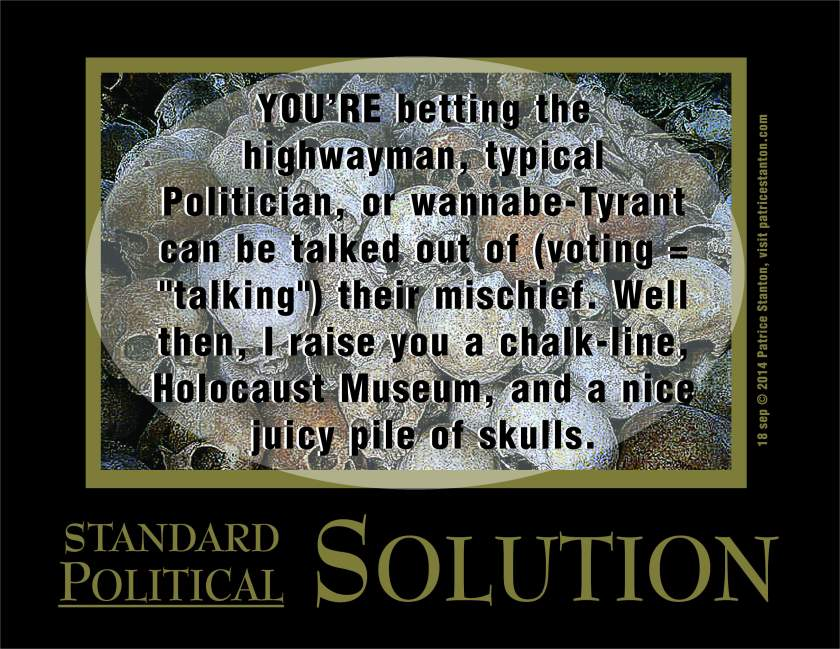 PoliticalSolution_poster