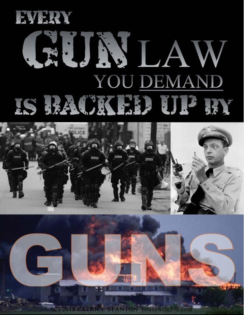 EveryGunLawYouDemand