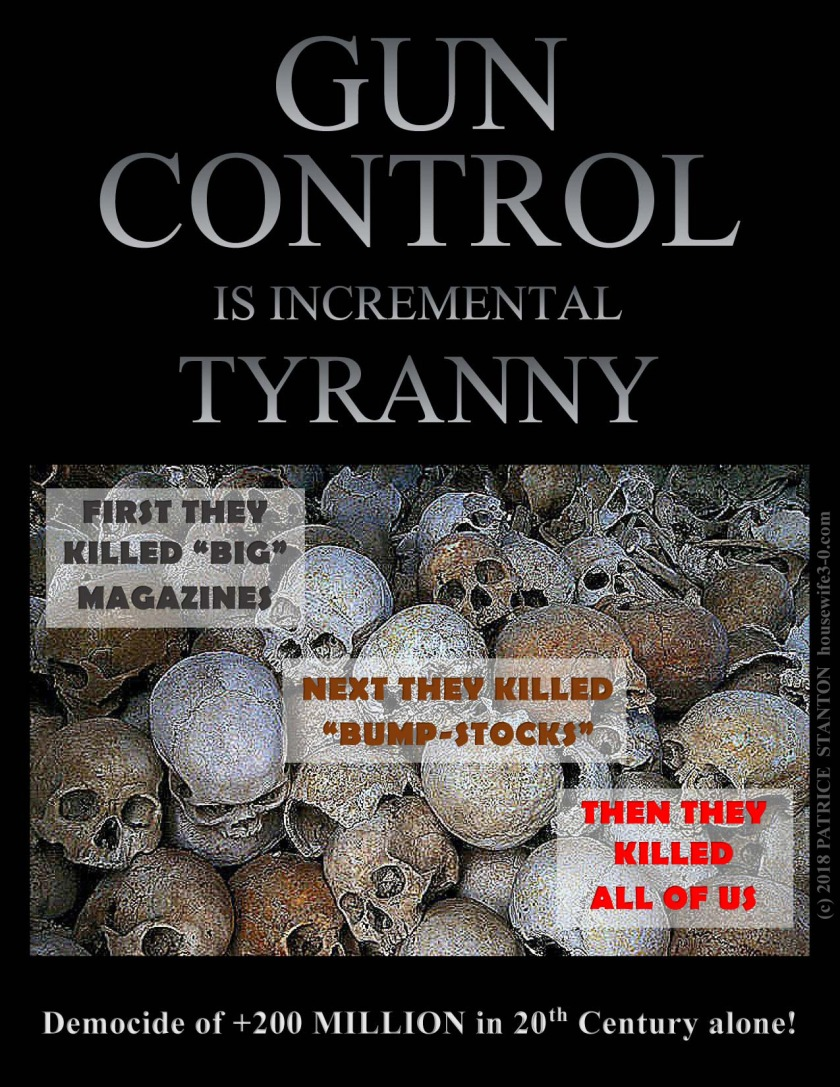 GunControl_IncrementalTyranny_copyright